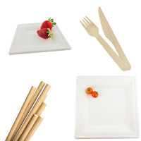 Compostable Catering Kit